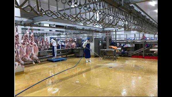 肉类加工厂地面用什么材料