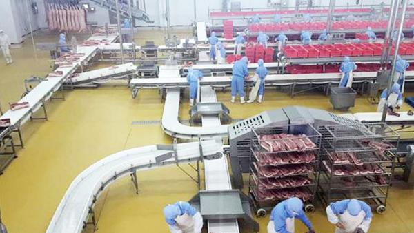肉食品地面材料