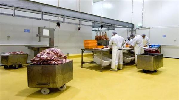 肉食品车间地面