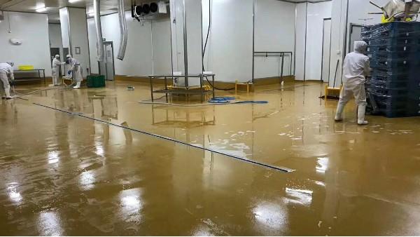食品厂生产车间用什么地坪