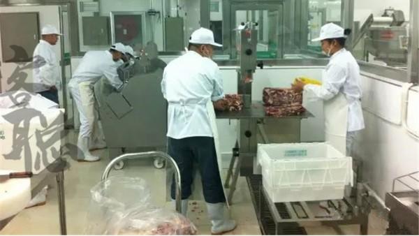 食品厂地面