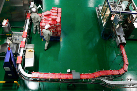 环氧砂浆地坪---明旺乳业生产车间
